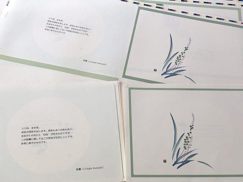画集 笠井季美 心の彩 Ⅳ 校正