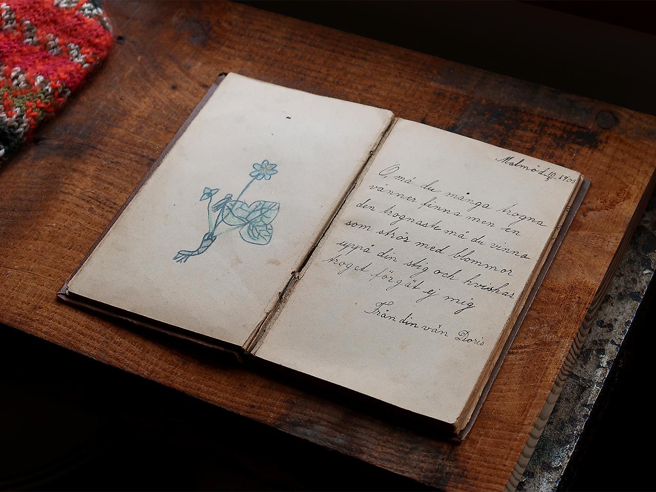Soil 20世紀初頭の絵日記帳