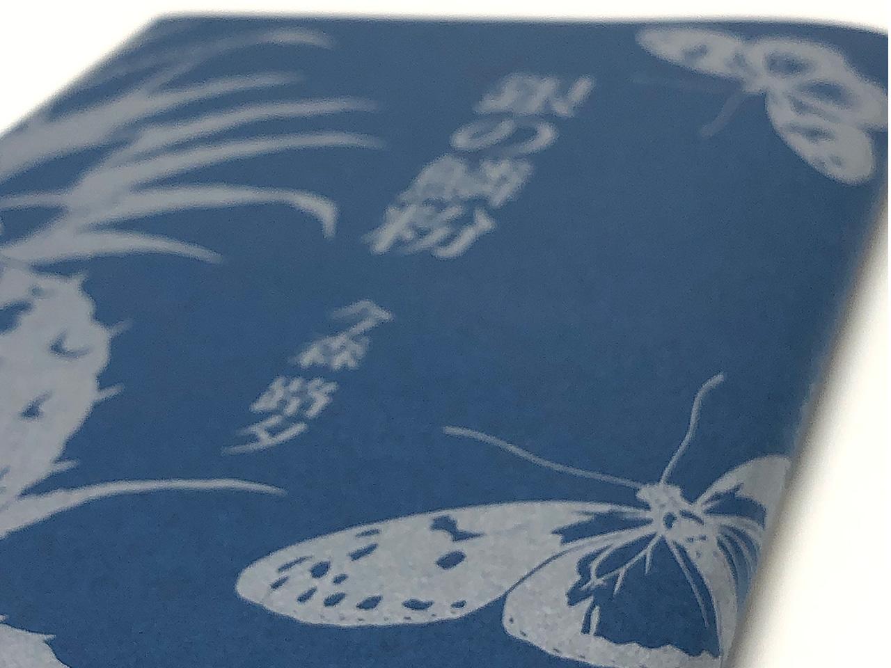 今森路夕 銀の鱗粉 表紙