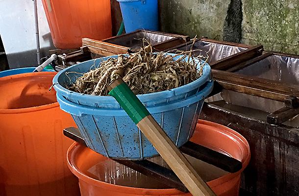 紙料と混ぜ合わせる植物粘液のねり